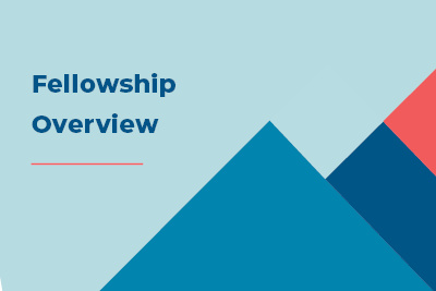The Fellowship Program Design and Experience