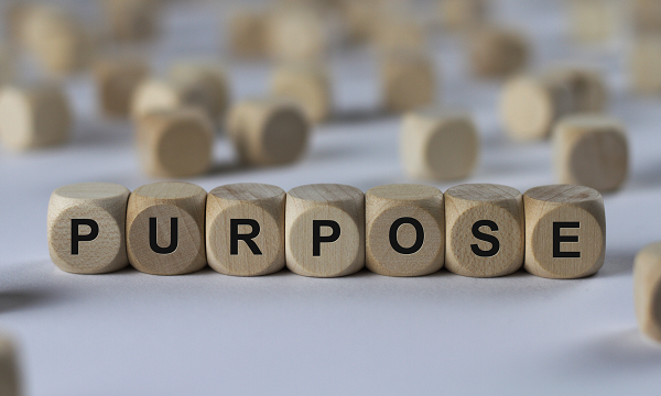 Finding Purpose in the Spirit of an Entrepreneur