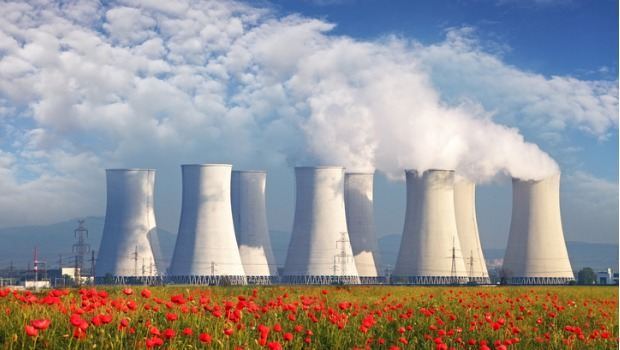A nuclear power plant in a field of tulips.