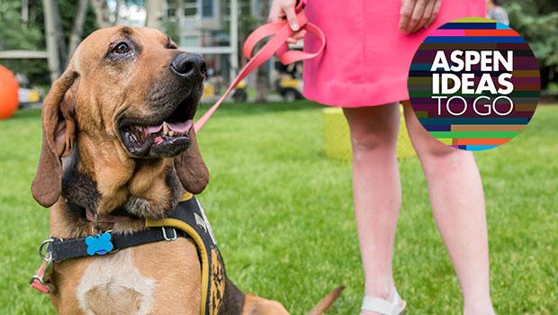 Adopting a Dog during Quarantine? You're Not Alone