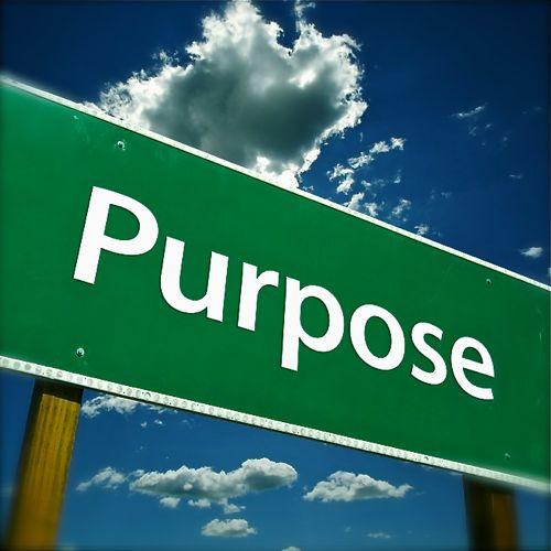 Making Purpose Work